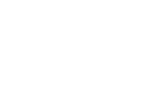 The American Board of Anesthesiology | Logo